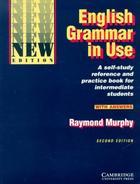 učebnice angličtiny English Grammar in Use