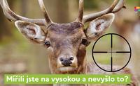 Pomaturitní studium angličtiny 2018/2019 - Kurz angličtiny - Brno-střed