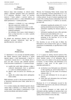 Ukázka překladu z ČJ do AJ (PDF ke stažení na kartě Překlady)